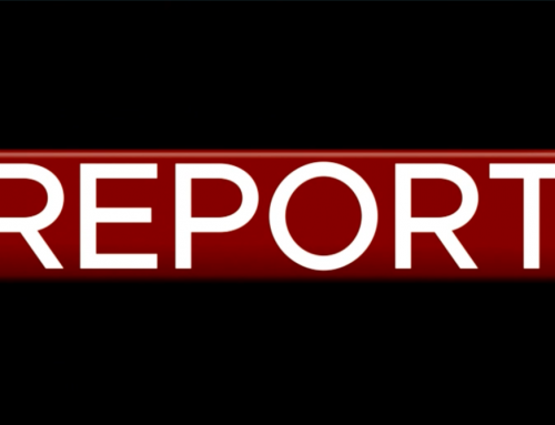 Valerio Vertua a Report su yotubers e tassazione